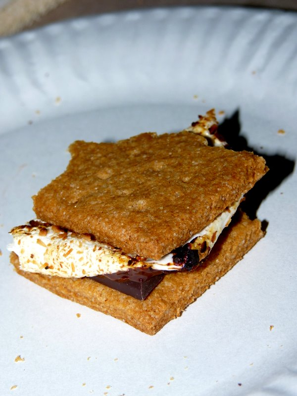 S'mores… EPIC.Vegan.S'mores.
